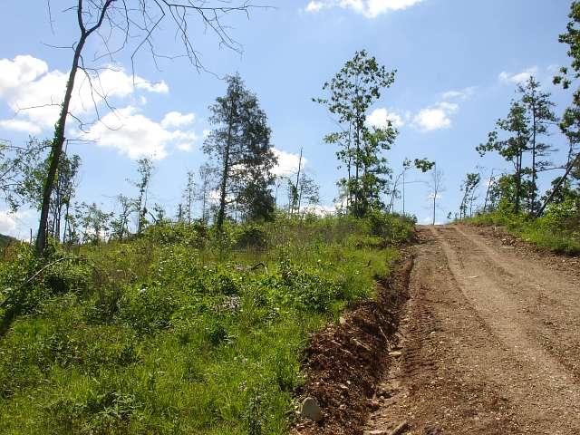 Missouri, Shannon County, 20.9 Acres Antler Ridge. TERMS $200/Month